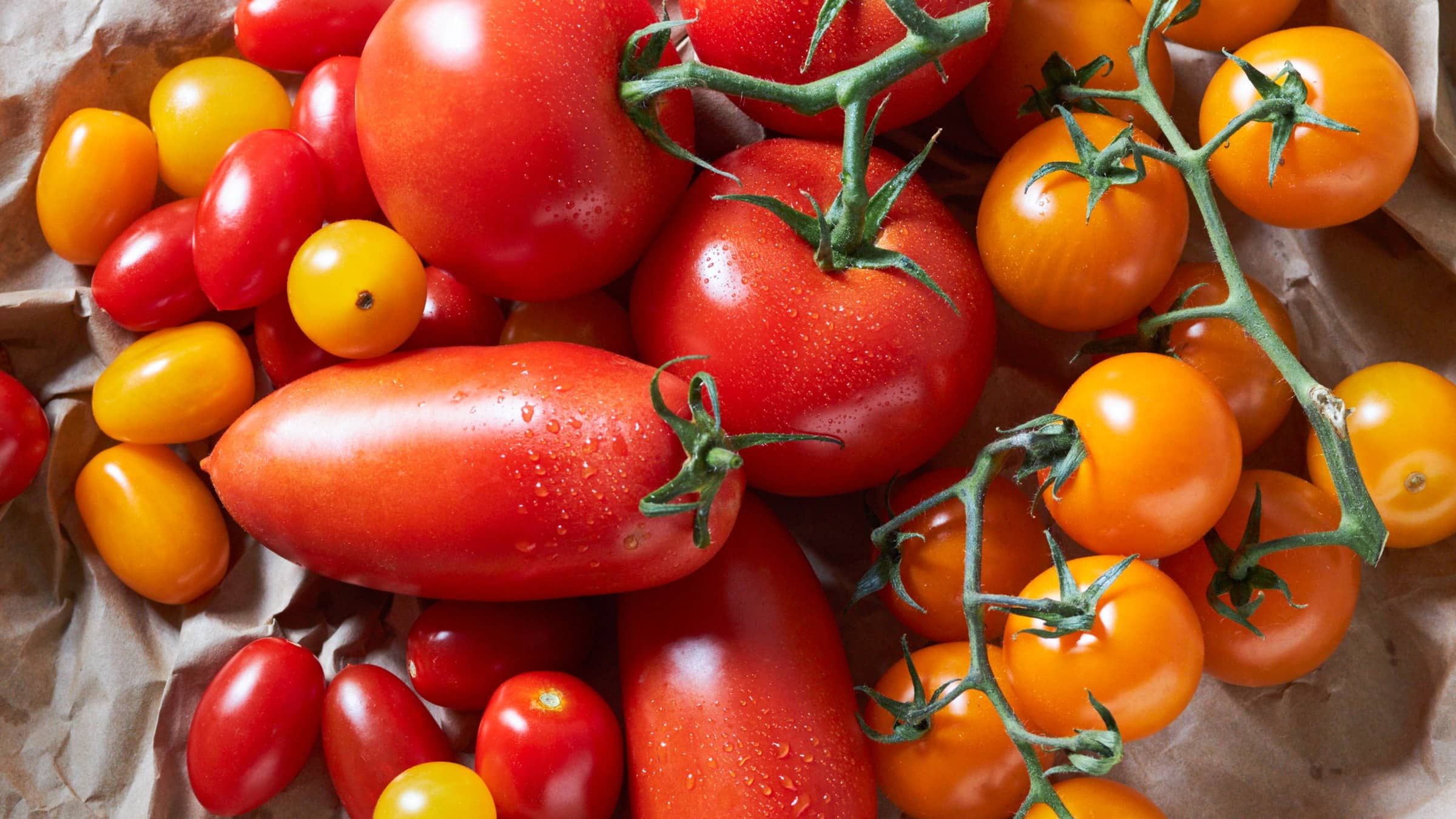 Tomaten Tomatensorten und ihre Zubereitung & Lagerung   Alnatura