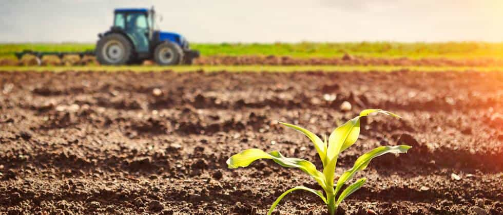 Alnatura: Bio-Lebensmittel aus dem Super Natur Markt